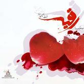 saeed sma1370